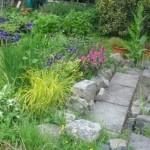 garden-26_med